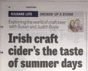 Leinster Leader June2015